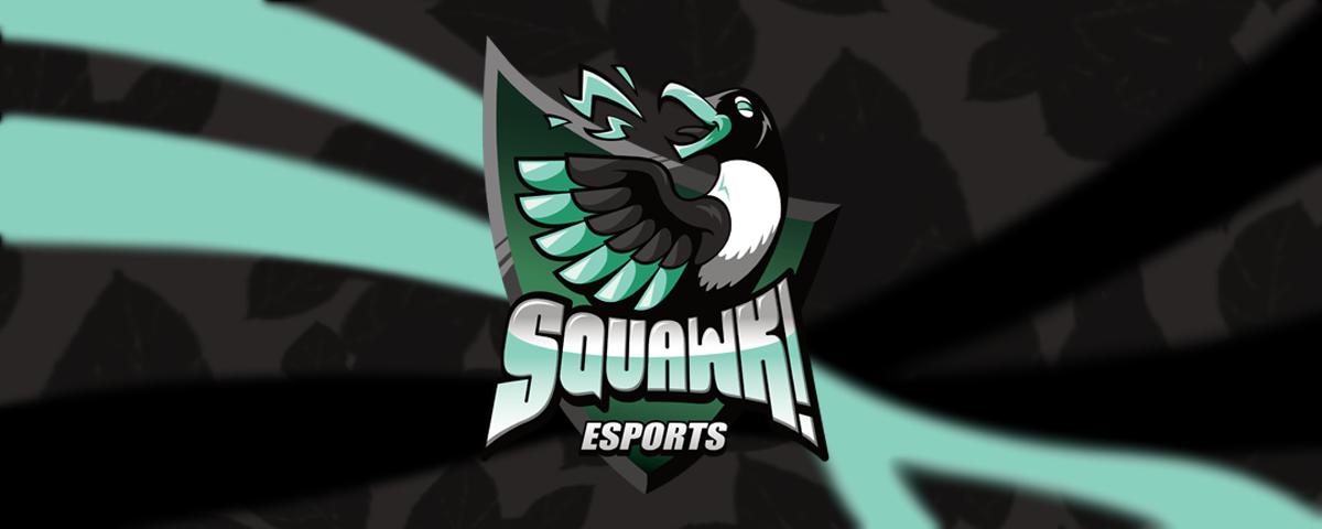 Background SQUAWK! Esports