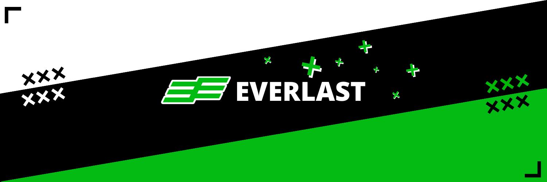 Background Everlast Esports