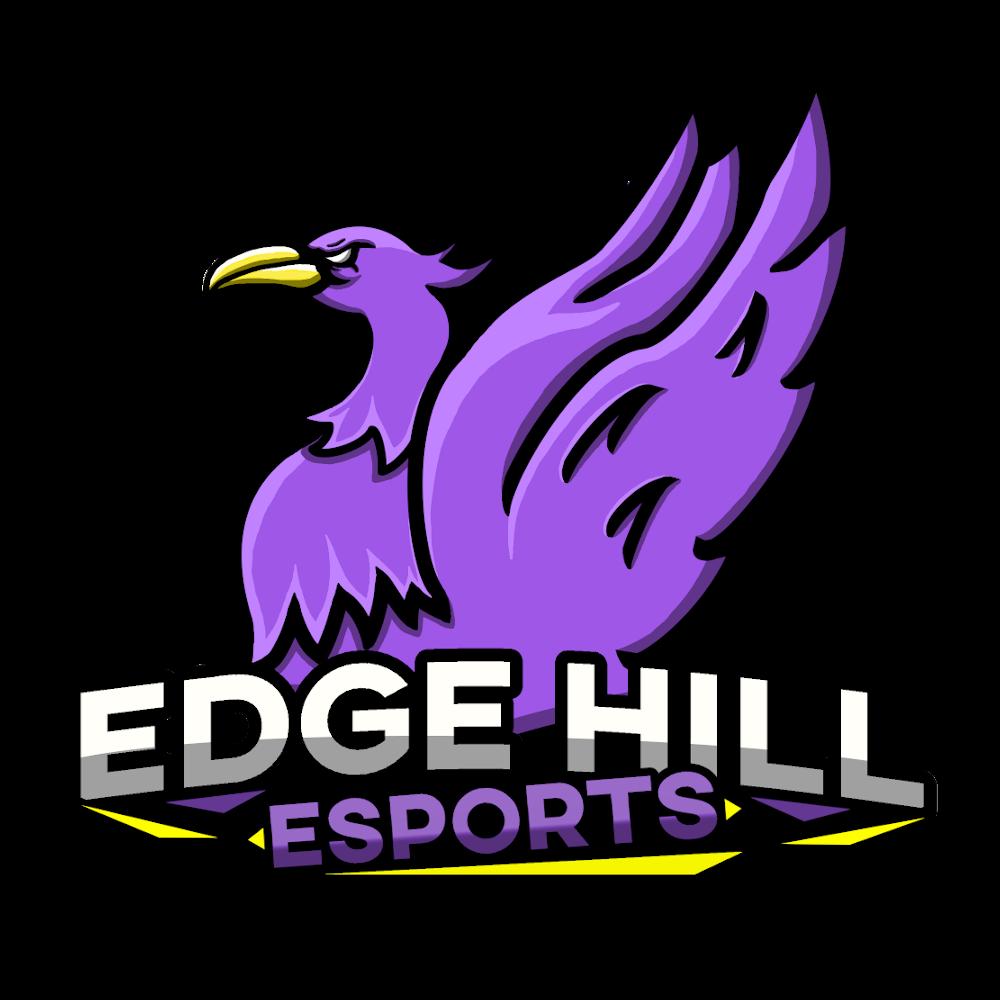 Background Edge Hill Esports